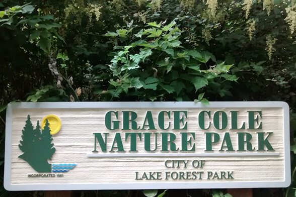 img-Lake-Forest-Park